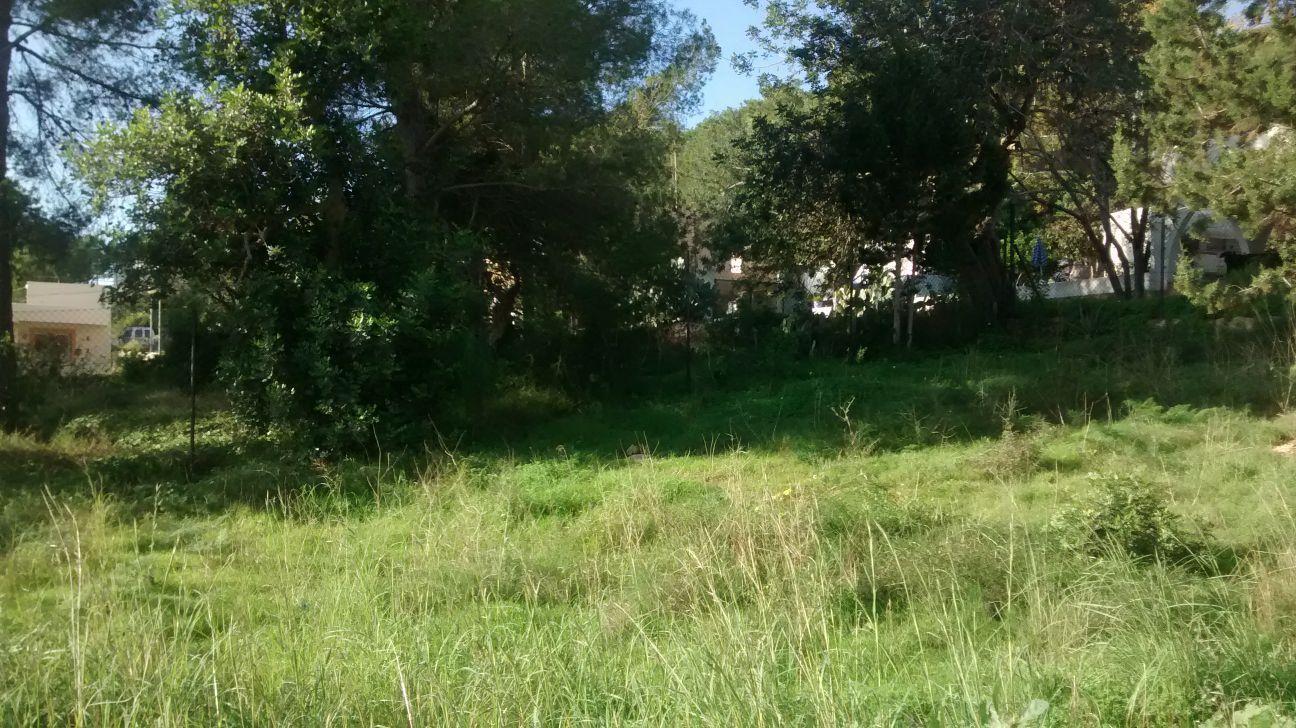 URBAN LAND AREA OF SA CAROCKA